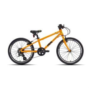 frog52-orange