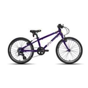 frog52-purple