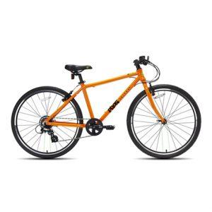 frog73-orange